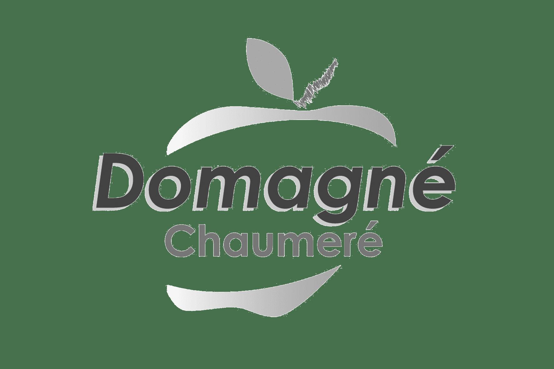 https://doubleve.fr/wp-content/uploads/2019/07/Logo-domagné.png
