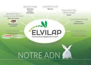graphiste logo agriculture Bretagne