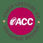 certification doubleve coaching pour entrepreneurs à Chateaubourg