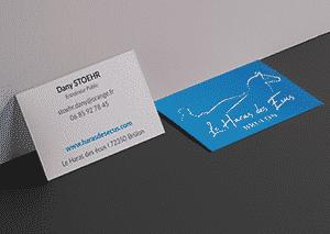Agence de communication design graphique - Doublevé - Chateaubourg -Carte de visite Tarja